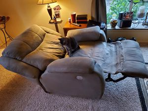 Free-Kitty not included for Sale in Puyallup, WA