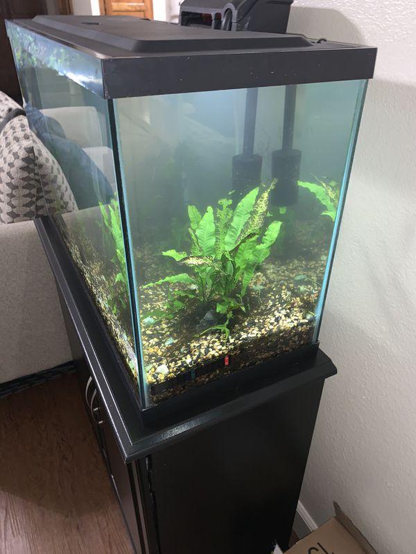 30 gallon aquarium with stand