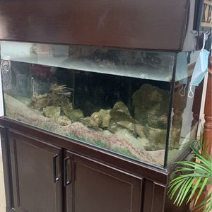 Fish Tank for Sale in Santa Fe Springs, CA