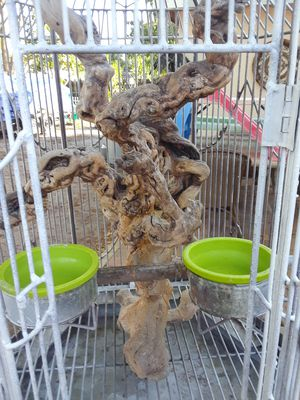 Bird cage for Sale in Fort Pierce, FL