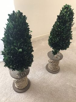 Smith & Hawken Natural Boxwood Leaves Topiary (set of 2) for Sale in Austin,  TX