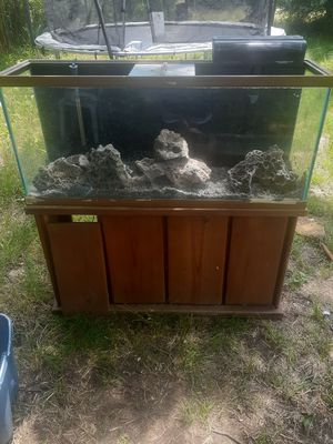 75 gallon fish tank for Sale in Fort Worth, TX