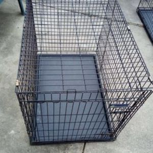 Petmate Medium Dog Kennel for Sale in San Antonio, TX
