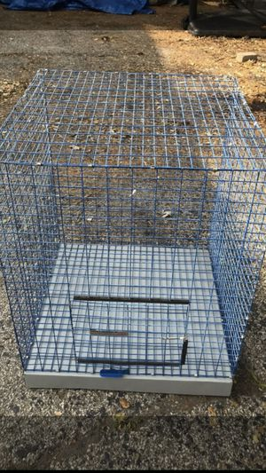 Big cage Birds/Critter for Sale in Mundelein, IL