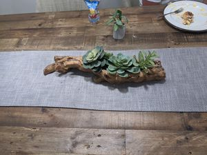 Succulant decor for Sale in Columbus, OH