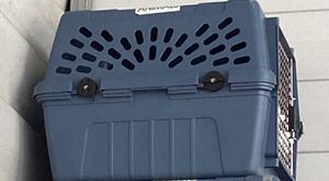 Dog Crate Kennel Cage for medium to large size dog for Sale in Orlando, FL