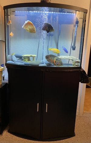 I sell fish tank with its table .no fish or filter .36 gallons for Sale in Alafaya, FL