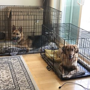 XXL Dog Crate Kennel Large Pet Crate for Large Breed Dog for Sale in San Bruno, CA
