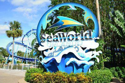 Seaworld florida