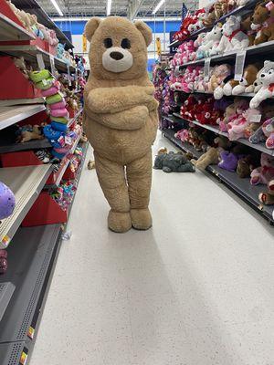 Teddy bear for Sale in Omaha, NE