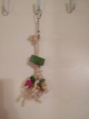 Bird toy for Sale in Lancaster, CA