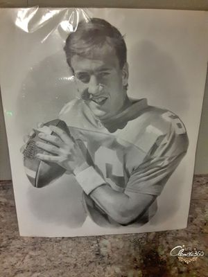 PEYTON MANNING HAND DRAWING : TENNESSEE COLLEGE TEAM for Sale in Avon Park, FL