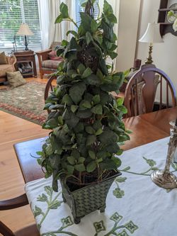 Ivy topiary for Sale in Puyallup,  WA