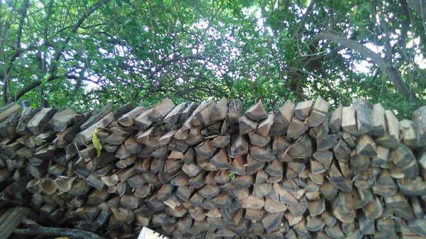 Hard oak & locus seasoned firewood