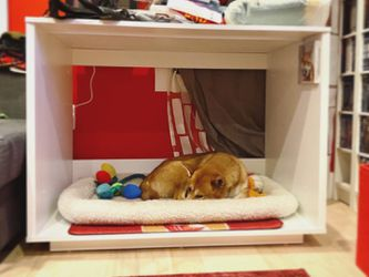 Omlet dog furniture for Sale in Brooklyn,  NY