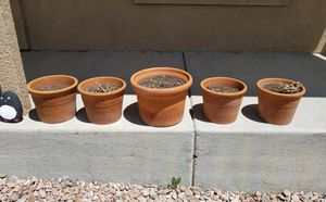 Flower Pots for Sale in Fountain, CO