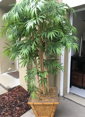 Fake Plant - 8 FT Tall for Sale in Tampa, FL