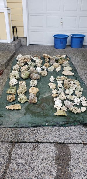 240lbs of dry reef rock for Sale in Hillsboro, OR