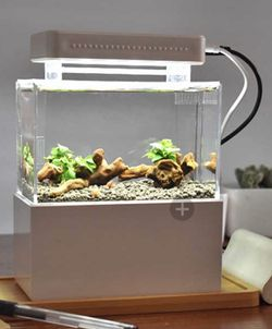 mini plastic fish tank portable desktop for Sale in Rancho Cucamonga,  CA