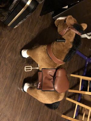 Riding horse for Sale in Buffalo, NY