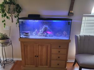 55 gallon salt water tank for Sale in Eagle Lake, FL