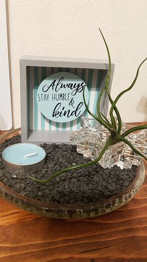 Live air plant & candle holder for Sale in Fullerton, CA