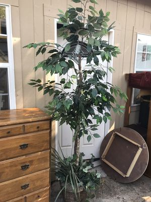 Artificial Plant 6.5Ft. $20 for Sale in Bedford, TX