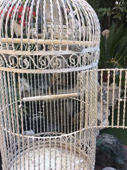 Very Nice Cage🌺 for Sale in San Jose,  CA