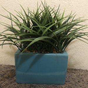 Fake Plant for Sale in Pomona, CA