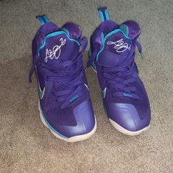 Nike Lebron Hornet for Sale in Rockville Centre,  NY