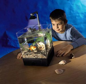 1.5 gal / 5.5L Aquarium Fish Tank for Home Office w/ LED Light & Filter & Pump for Sale in Rowland Heights, CA