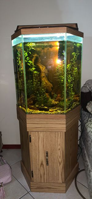 Driftwood for Sale in Hoffman Estates, IL