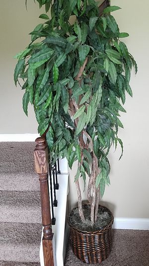artificial tree indoor for Sale in Lexington, KY