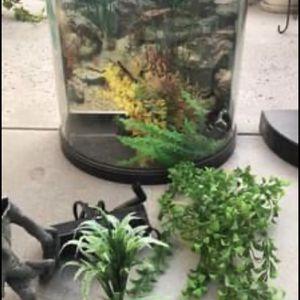 Ten Gallon Fish Tank. for Sale in Fresno, CA