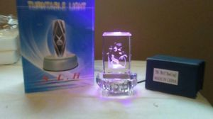 Turn table light with glass wolf display for Sale in TN, US
