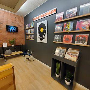 Vinyl Record LP's for Sale in Laguna Beach, CA