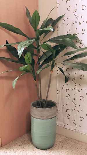 Home Goods Decorative Fake Plant for Sale in Clovis, CA