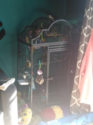 4 parrakets...tons of toys...food...and HUGE CAGE for Sale in Port Neches, TX