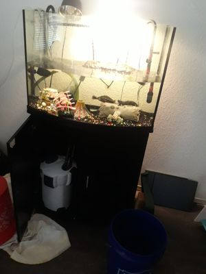 Aquarium and filter for Sale in Goodyear, AZ