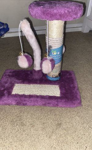 Kitten and ferret activity center for Sale in Raleigh, NC