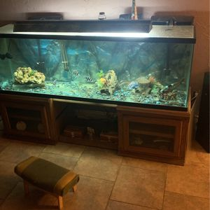 """""""Fish """"Tank for Sale in Ontario, CA"""