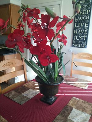 Artificial plant for Sale in Chandler, AZ