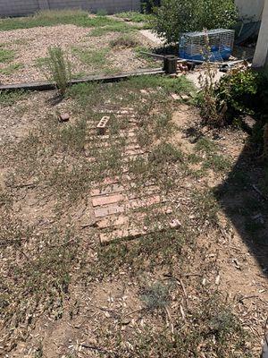 Free Brick for Sale in Albuquerque, NM
