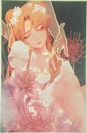 Sailor Moon - Princess Serenity Anime Poster Print for Sale in Poway, CA