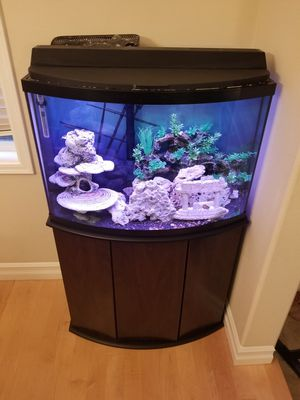 Aquarium fish tank for Sale in Everett, WA