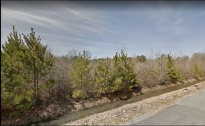 0.11 Acres for Sale in Pine Bluff, AR for Sale in Pine Bluff, AR