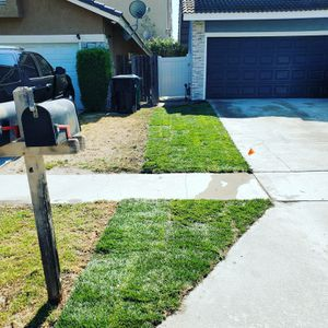 Tall fescue sod delivery for Sale in Montclair, CA