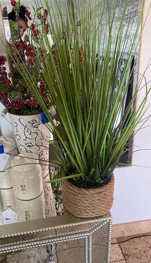 Pier one Decor greenery pot for Sale in Chandler, AZ