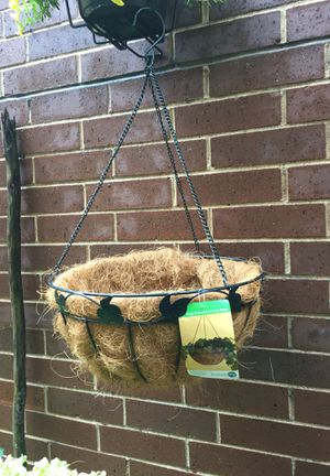 """16"""" Green Decorative Coconest Basket/new for Sale in Chicago, IL"""
