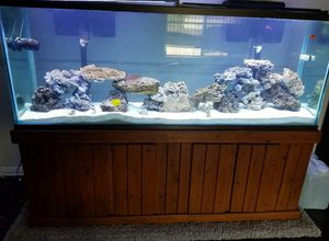 150 gallon fish tank, led lights and 3 filters for Sale in Leander, TX